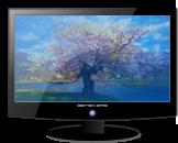 Ecran LCD d'ordinateur